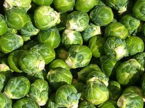 Brussels sprouts Wikipedia