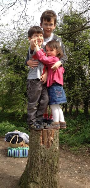 Kids tree stump