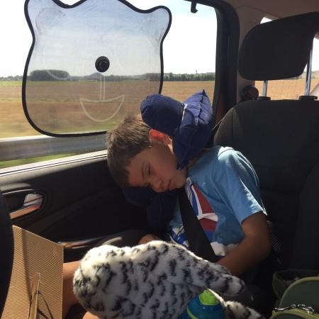 Toby road trip