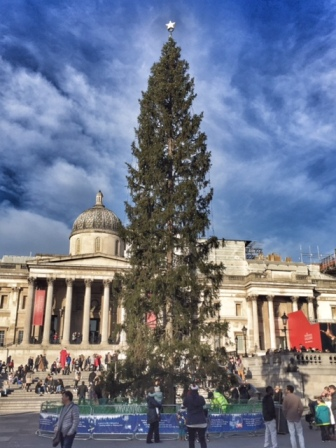 london-trafalgar-square-christmas-tree
